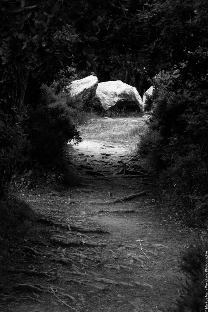 In den Wäldern von Carnac - 1