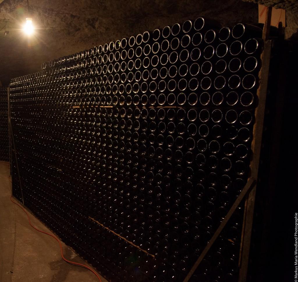 In der Kellerei von Louis de Grenelle Saumur - 5