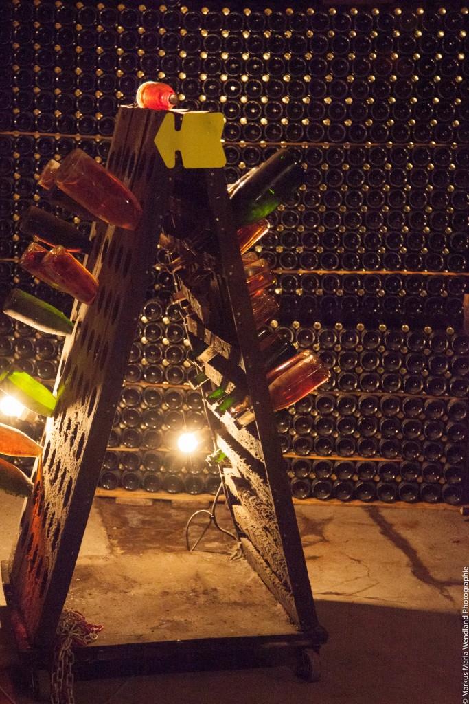 In der Kellerei von Louis de Grenelle Saumur - 3